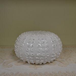 Riccio Di Mare In Ceramica